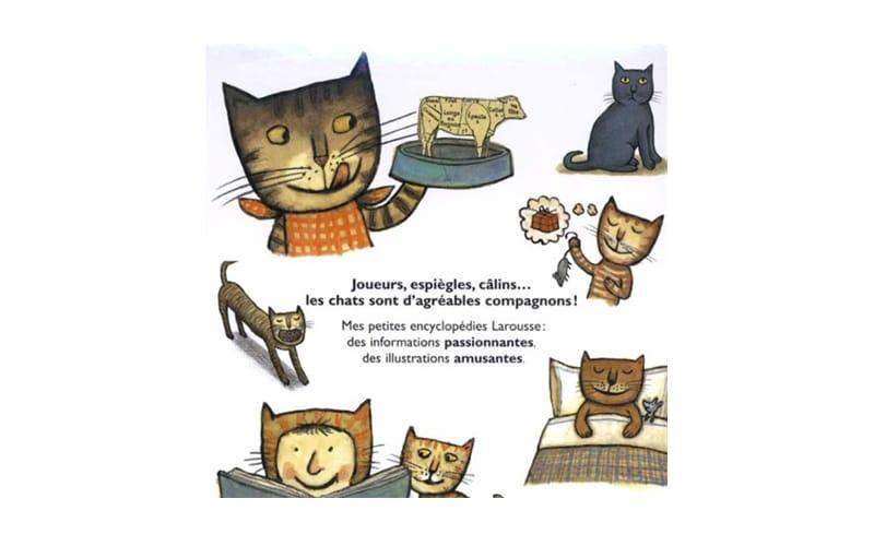 Les chats Livres neufs à prix réduit pour les primaires